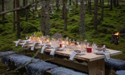 Video: Ganz Schweden ist ein Restaurant
